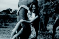 While posing for a picture next to an elephant named Goi, this tourist had no idea that she would be swept off her feet —literally.