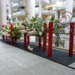 """""""Arranging Dai Kai-ko Exhibition"""""""