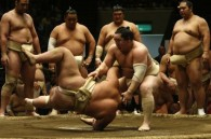 Gambling scandal ceases Japan's Sumo World