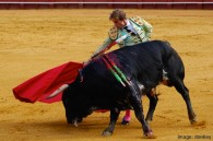 A Spanish Region First to Vote Out Bullfighting