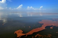 """Gulf 'Surface Oil"""" is Diminishing."""