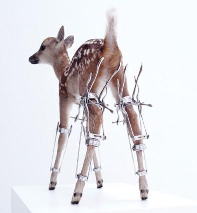 "Motohiko Odani's ""Erectro (Bambi)"" (1998) MOT PHOTO"