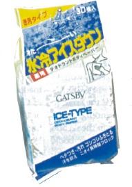 Gastby Ice-Type Deodorant