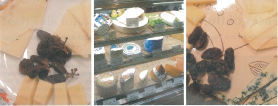 Fermier cheese store