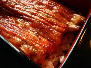 Japanese Unagi Rice Bowl