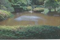 tokyoweekender_The spacious Teien Museum gardens