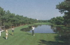 World-class golf courses