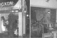 tokyoweekender_Mexican restaurant