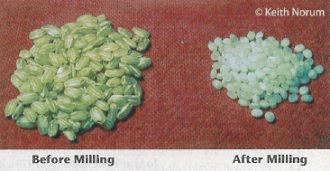 Rice before and after milling