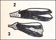 Illustrations 2, 3