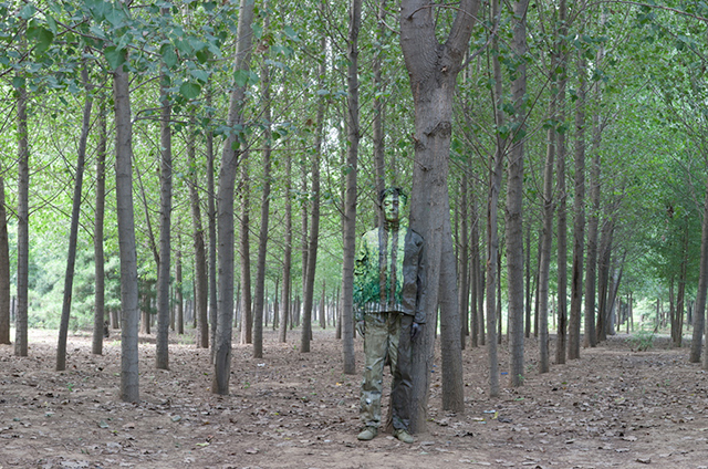 Trees and Forest, Liu Bolin