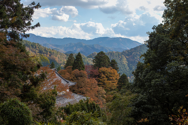 Well worth the hike: a view from the top of Mount Kurama