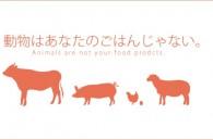 foie-gras-bento