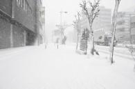 heavy-snow-disrupts-food