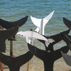 japanese-whaling-ban