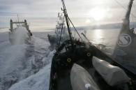 japan-to-resume-whaling