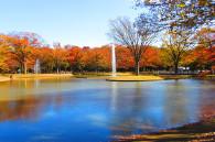 yoyogi-park