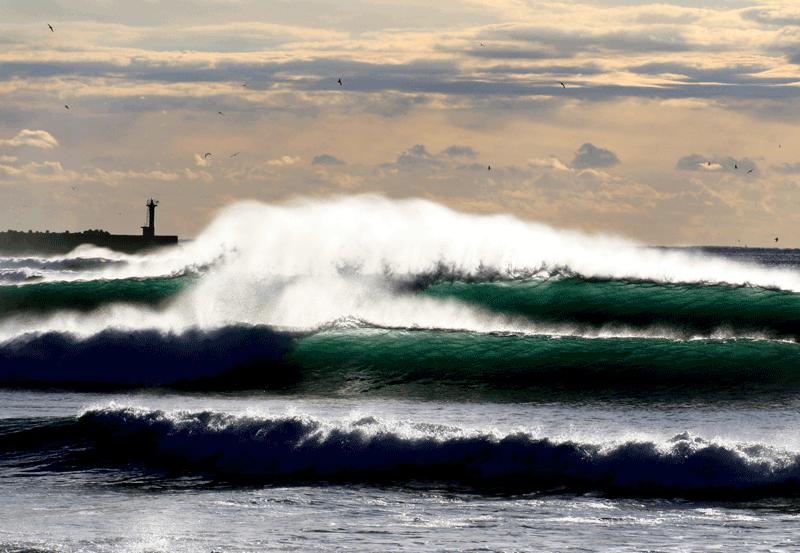 Kamogawa-Surfing