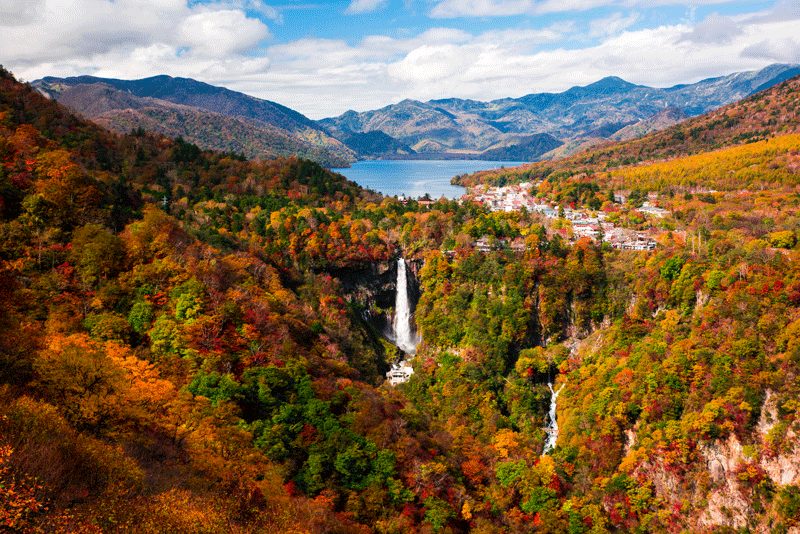 nikko-fall-foliage