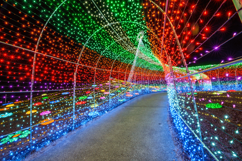 The Weekender Guide To Tokyo S Holiday Season Guides Events