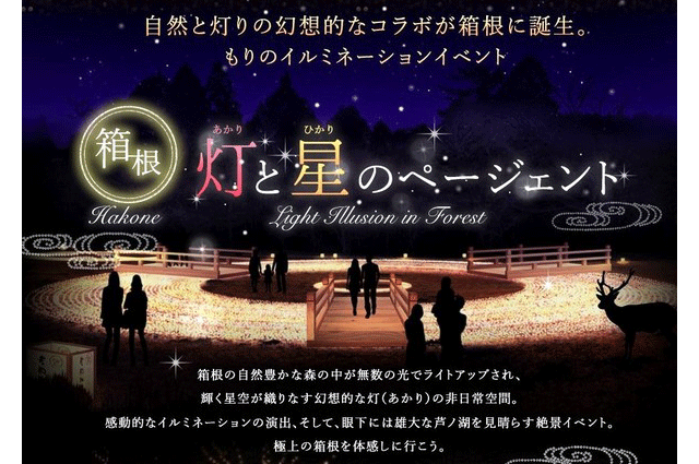 hakone-forest-illumination