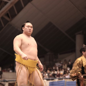 hakuho-sumo