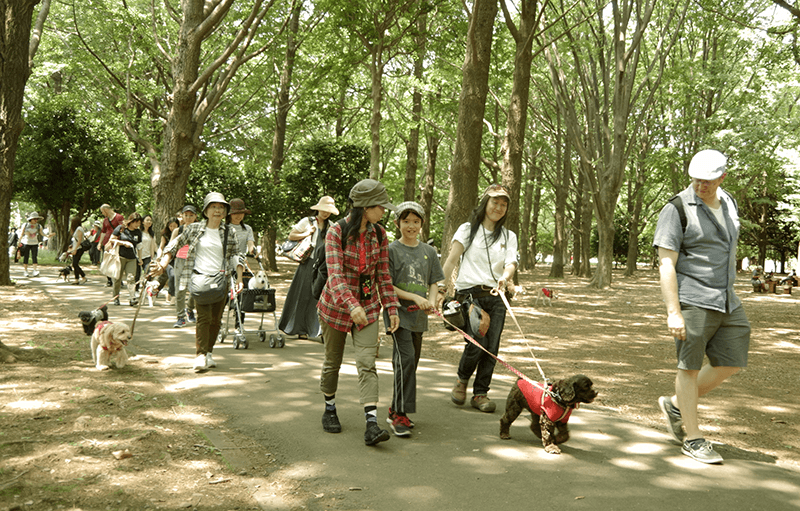 animal-walk-yoyogi-park