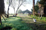 browns-field-farm-main