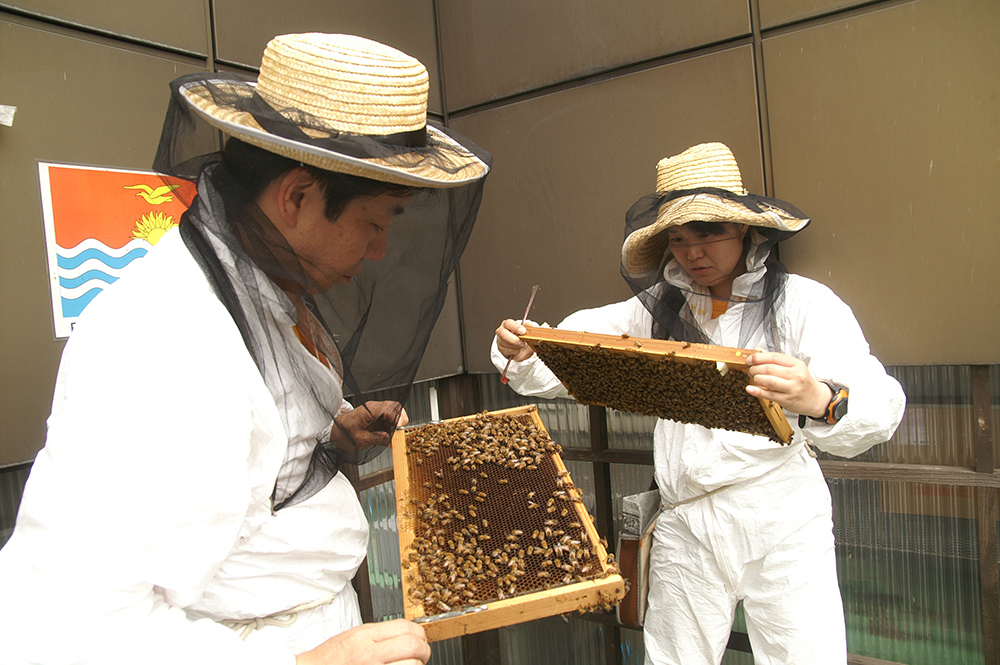 © Ginza Honey Bee Project NPO