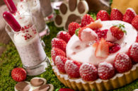 Strawberry Forest hilton tokyo odaiba