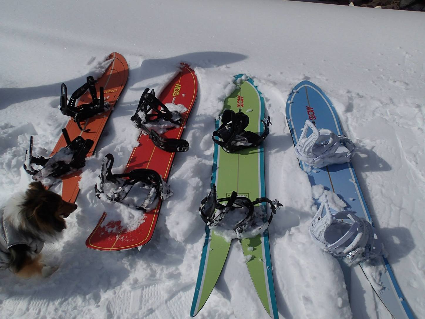 Snowsurf boards ready to roll. Photo by Phil Luza