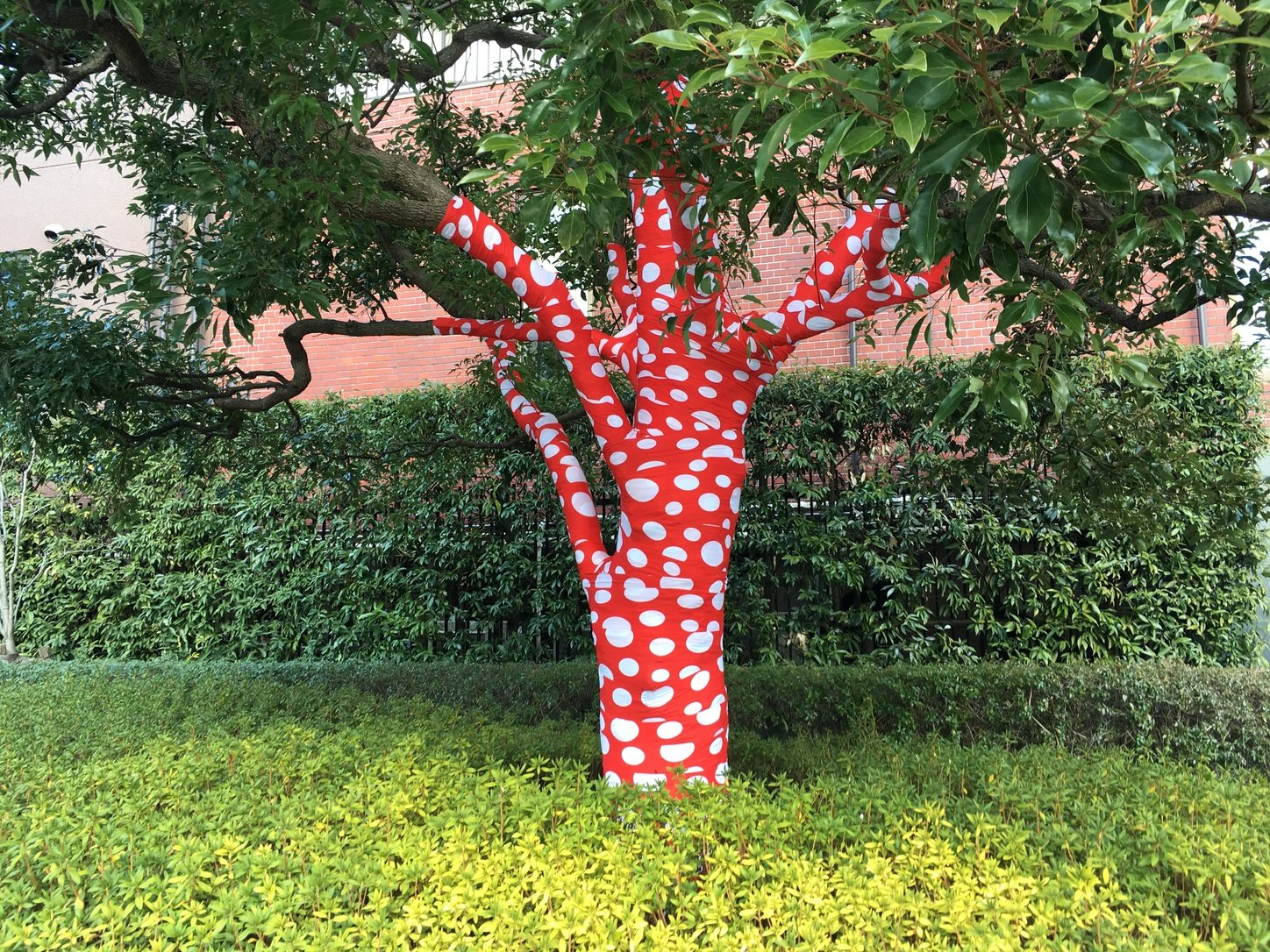 At the entrance to the National Art Center in Roppongi, even the trees have been Yayoi Kusama-fied