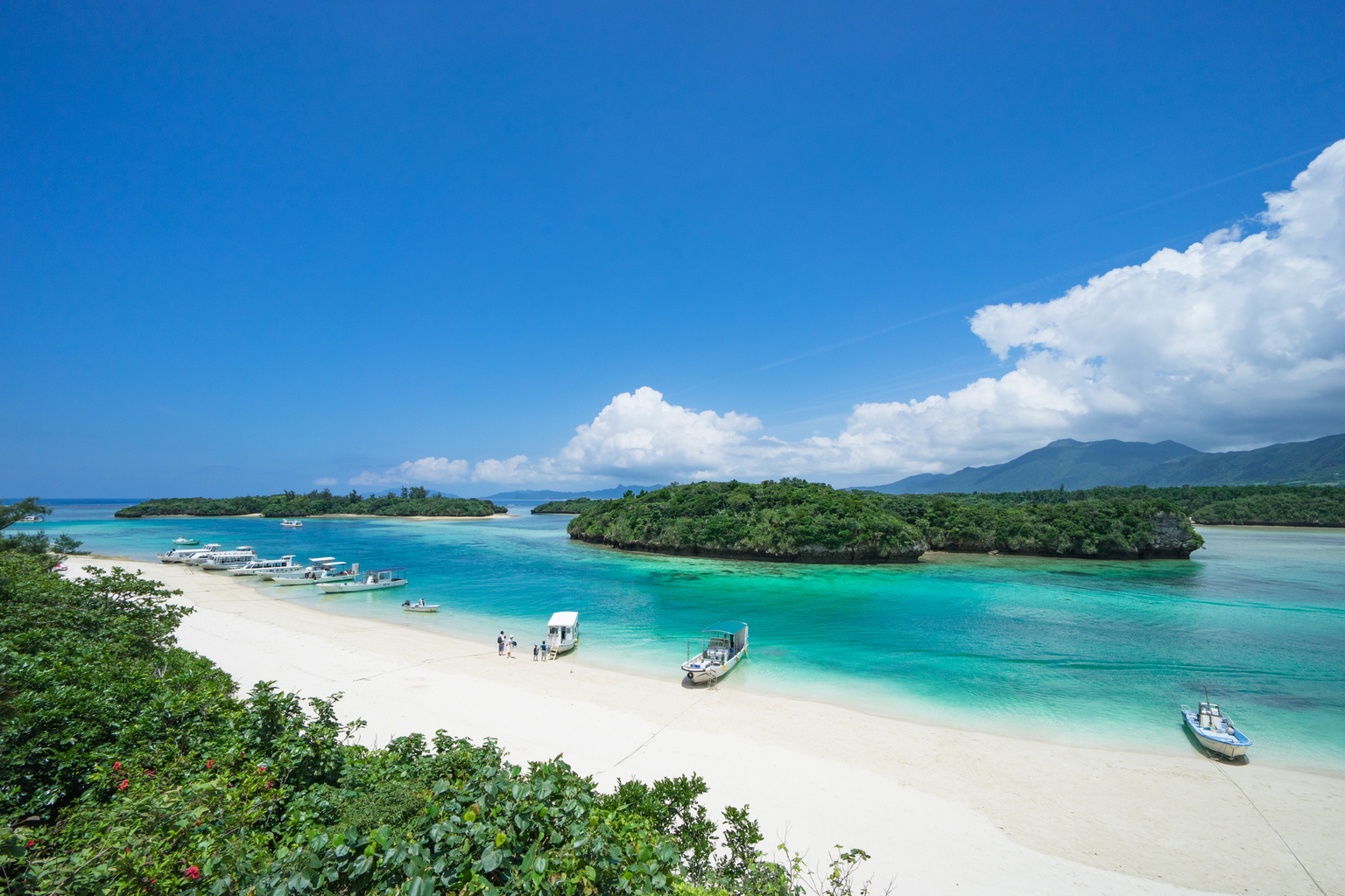Best Tropical Islands To Visit In January
