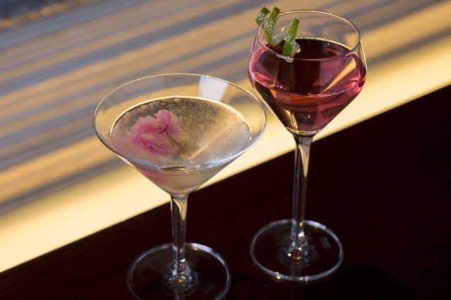 TSH_Camellia_cocktails