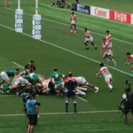 Ireland Proves Too Much for the Brave Blossoms in Second Match