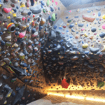 Rhino and Bird Bouldering Gym