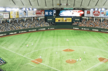 Tokyo Dome Watch the Tokyo Giants Baseball