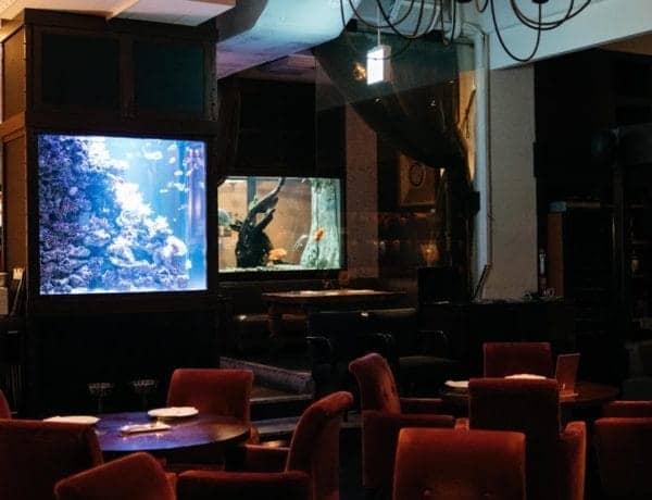Den Aquaroom Aoyama Restaurant