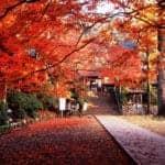 Saga's Daikozenji Temple Celebrates 1,300th Anniversary