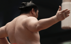 a picture of a sumo wrestler seen from the back