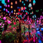 We Can't Wait to See teamLab's New Digital Museum
