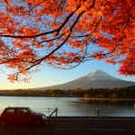 A Guide to Car Rental in Japan