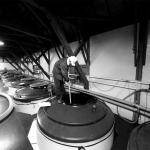 Tour Historic Toshimaya Shuzo Brewery