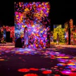 A World First: Mori Building Digital Art Museum teamLab Borderless Opens in Tokyo