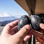 Live Longer with the Black Eggs of Hakone's Hell Valley