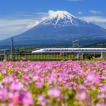 Japan Train Superlatives: 23 Fun Facts for Dinner Party Convos