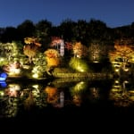Mejiro Garden Gets Lit Up This November