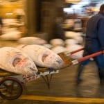 Tsukiji Fish Market Closes But Move Still Causing Controversy