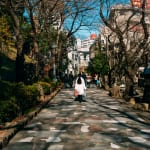Take Things Slow in Oji: An Area Guide