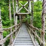 4 Reasons to Visit Japan's Remote Iya Valley on Shikoku Island